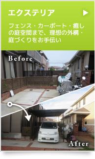 example_bnr01
