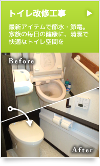 example_bnr06