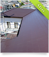 example_painting_roof03_a