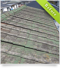 example_roof02_b