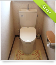 example_toilet01_a