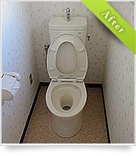 example_toilet02_au