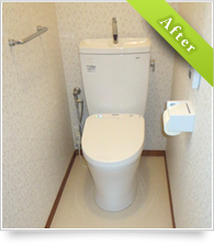 example_toilet03_a